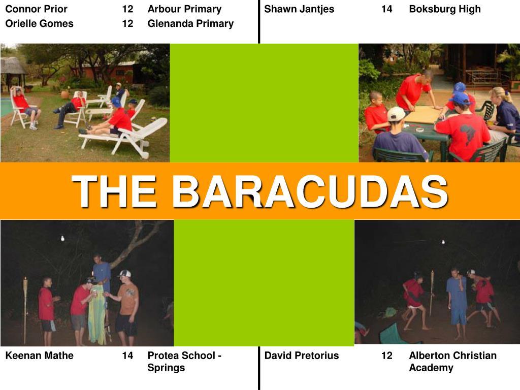 THE BARACUDAS