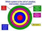which system is the unit of practice intervention measurement