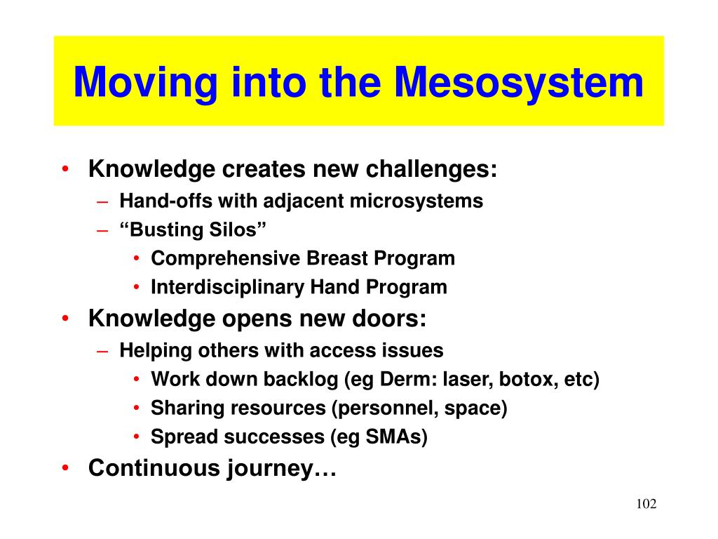 Moving into the Mesosystem
