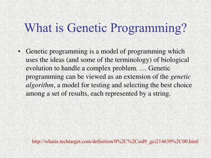 What is genetic programming