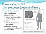 classification of sci completeness degree of injury
