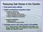 reducing salt stress in the garden
