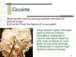 cocaine24