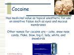 cocaine25