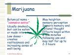 marijuana16