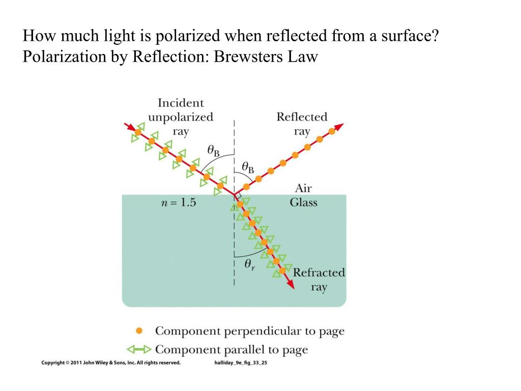 How much light is polarized when reflected from a surface?