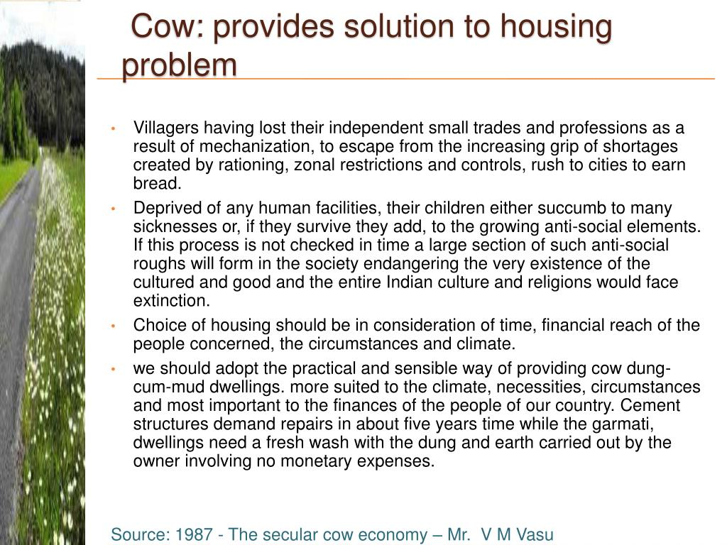 Cow: provides solution to housing problem