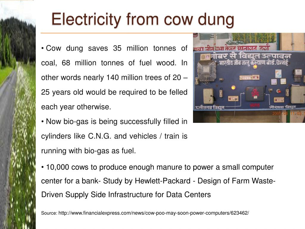 Electricity from cow dung
