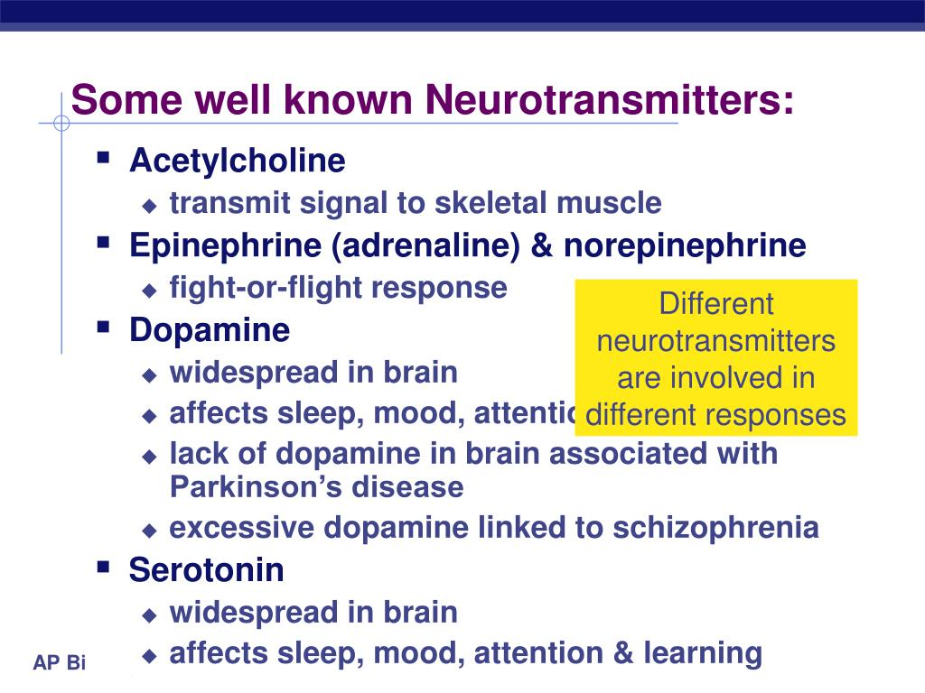 Some well known Neurotransmitters: