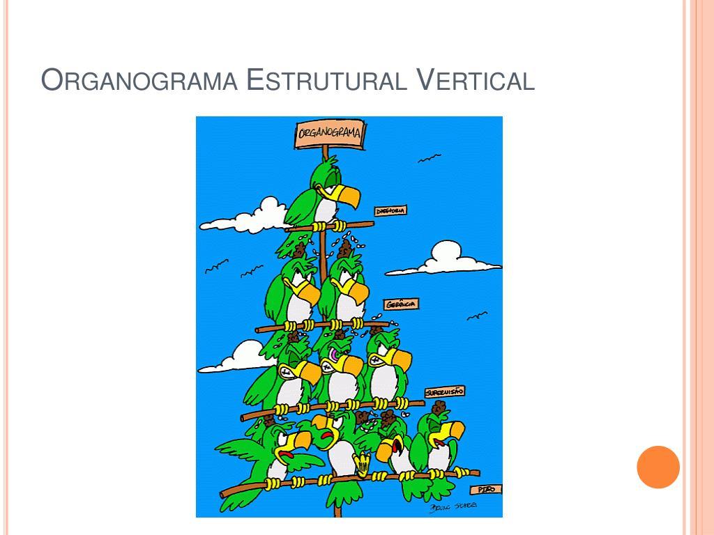Organograma Estrutural Vertical