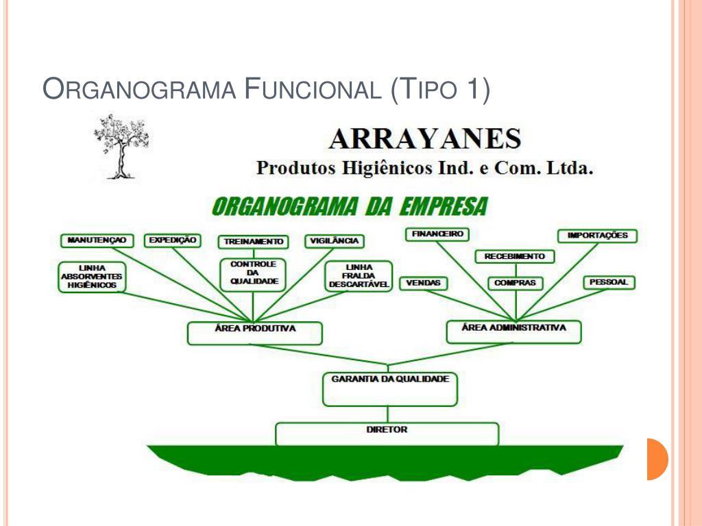 Organograma Funcional (Tipo 1)