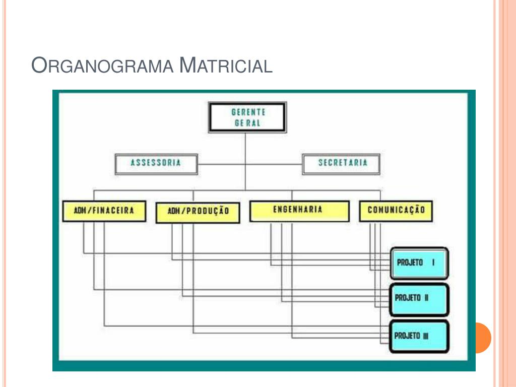 Organograma Matricial
