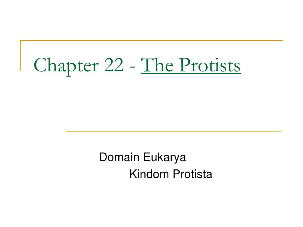 chapter 22 the protists l.