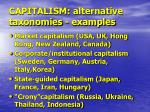 capitalism alternative taxonomies examples