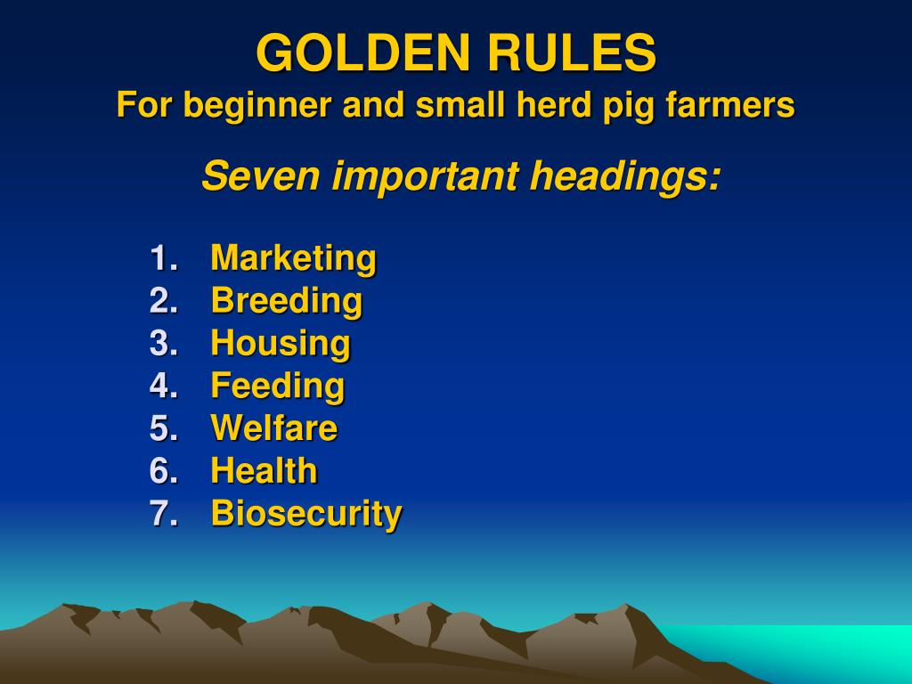 golden rules for beginner and small herd pig farmers l.