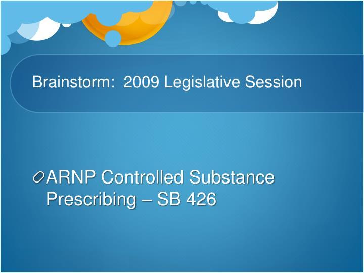 Brainstorm:  2009 Legislative Session