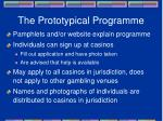 the prototypical programme