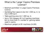 what is the large casino premises licence