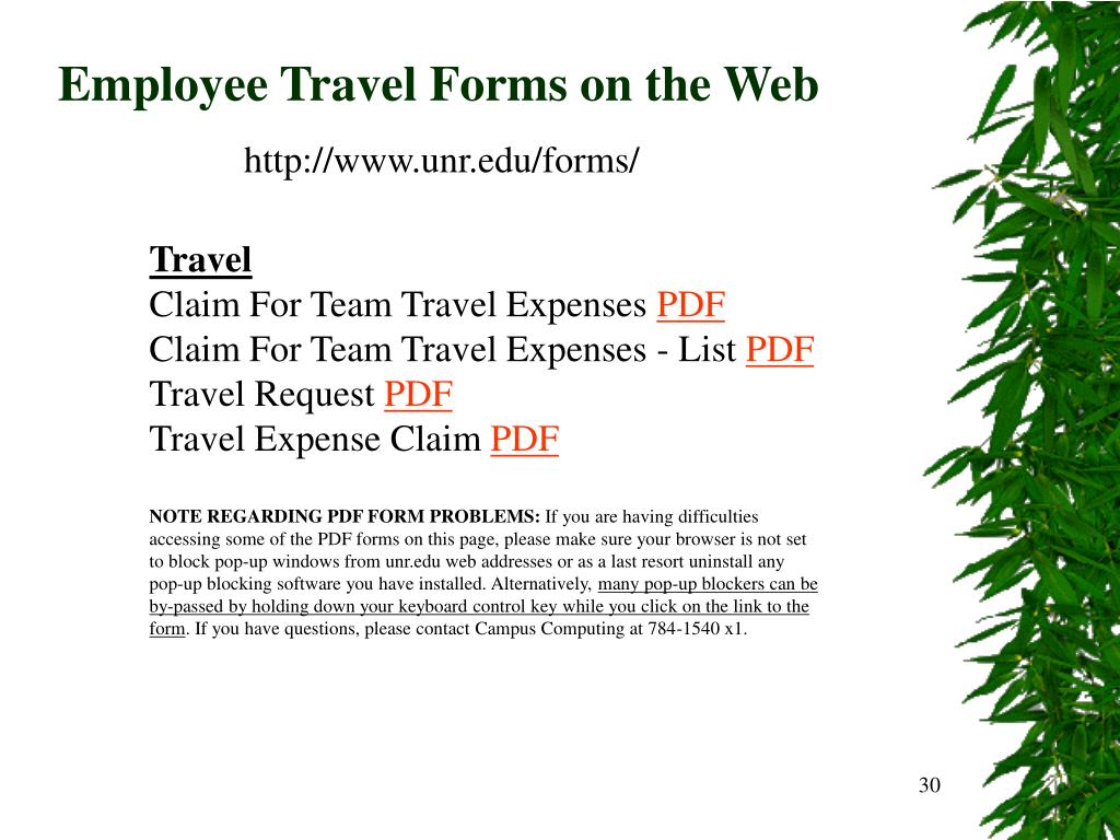 Employee Travel Forms on the Web
