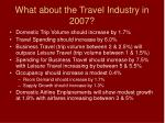 what about the travel industry in 2007