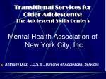 transitional services for older adolescents the adolescent skills centers