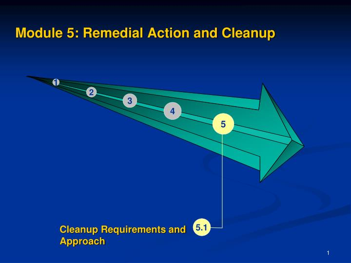 module 5 remedial action and cleanup n.
