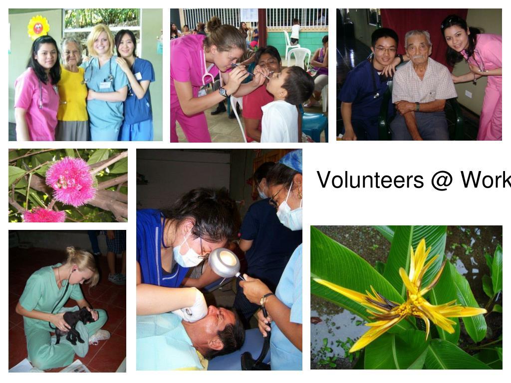 Volunteers @ Work