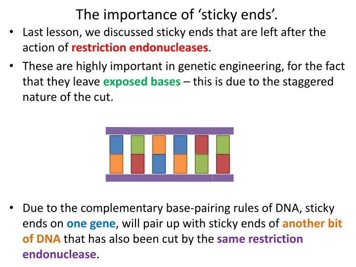 The importance of sticky ends
