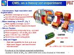 cms as a heavy ion experiment