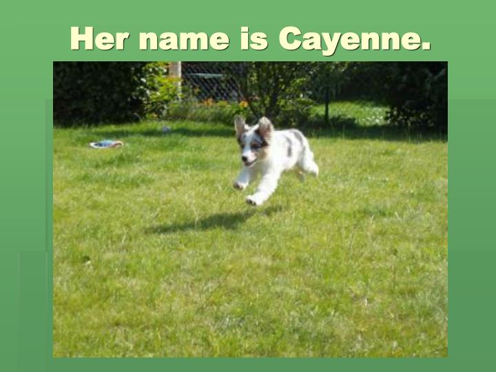 Her name is cayenne