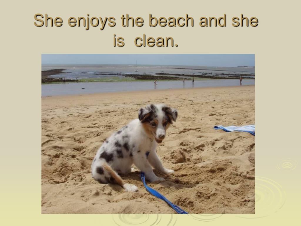 She enjoys the beach and she is  clean.