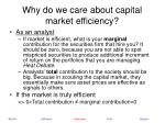why do we care about capital market efficiency18