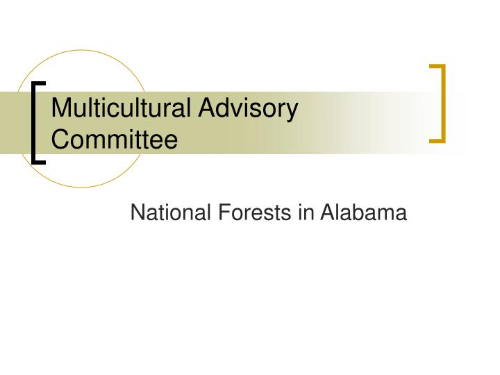 multicultural advisory committee n.