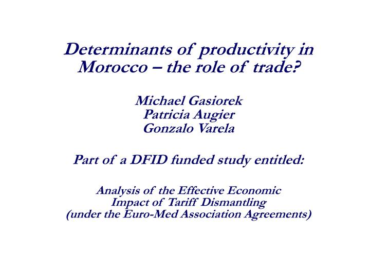 Determinants of productivity in Morocco – the role of trade?
