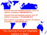 the canning fruit and vegetable industry in spain4