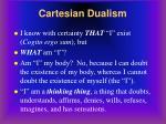 cartesian dualism