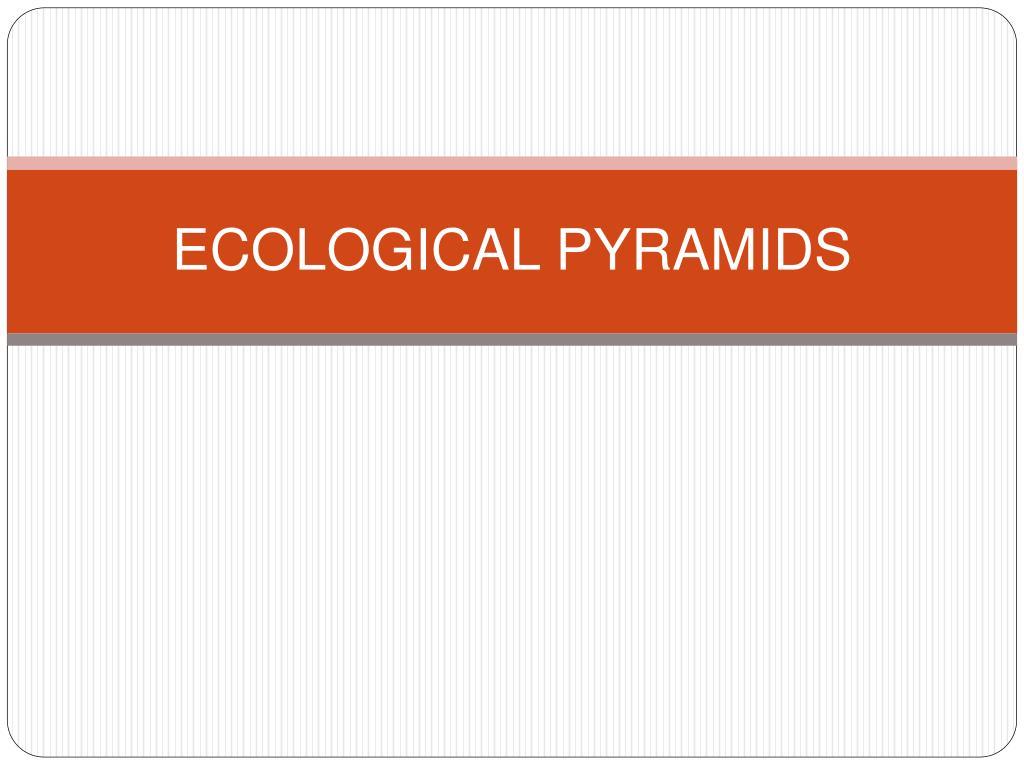 ecological pyramids l.