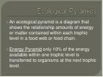 ecological pyramids2