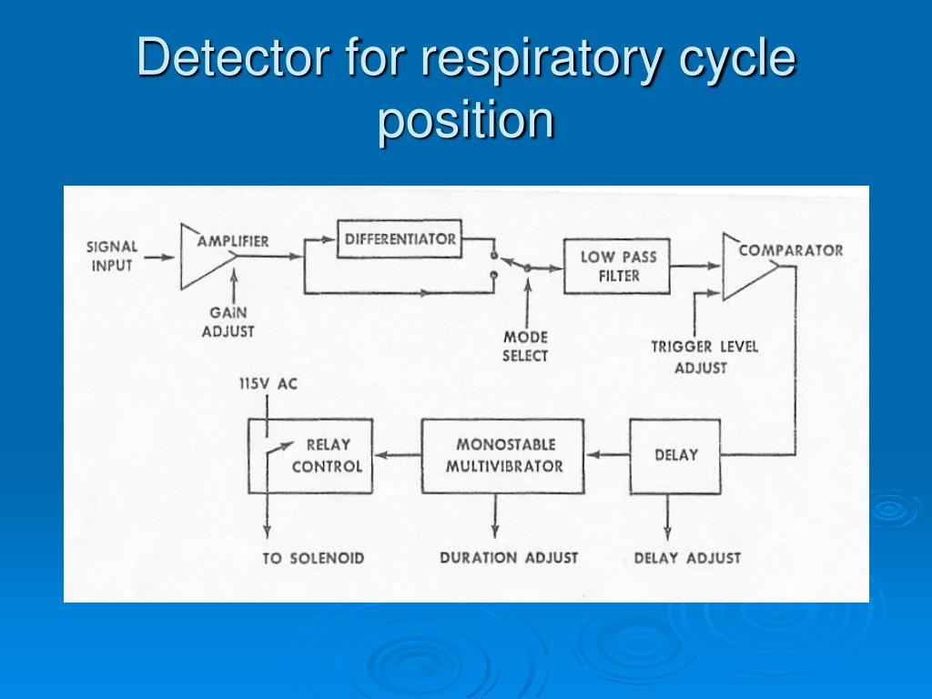 Detector for respiratory cycle position