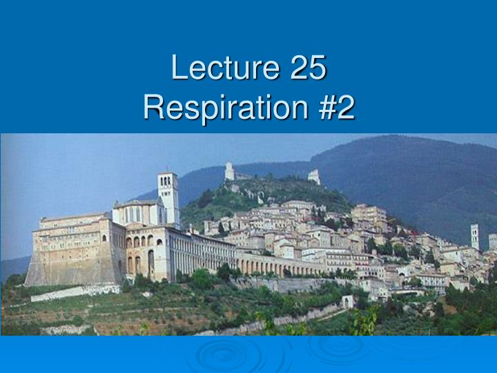 Lecture 25 respiration 2