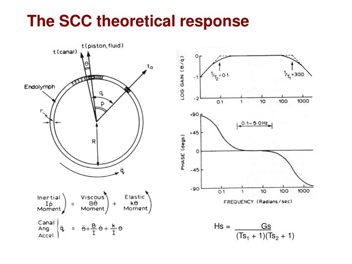 The SCC theoretical response