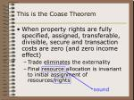 this is the coase theorem