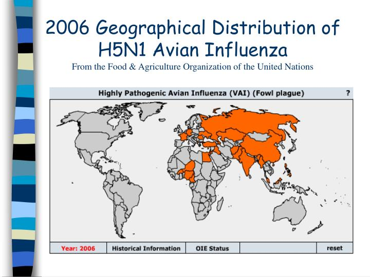 2006 Geographical Distribution of H5N1 Avian Influenza