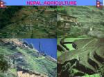 nepal agriculture