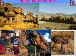 nepal agriculture32