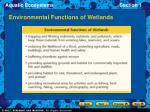 environmental functions of wetlands
