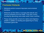 freshwater wetlands17