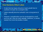 how nutrients affect lakes14