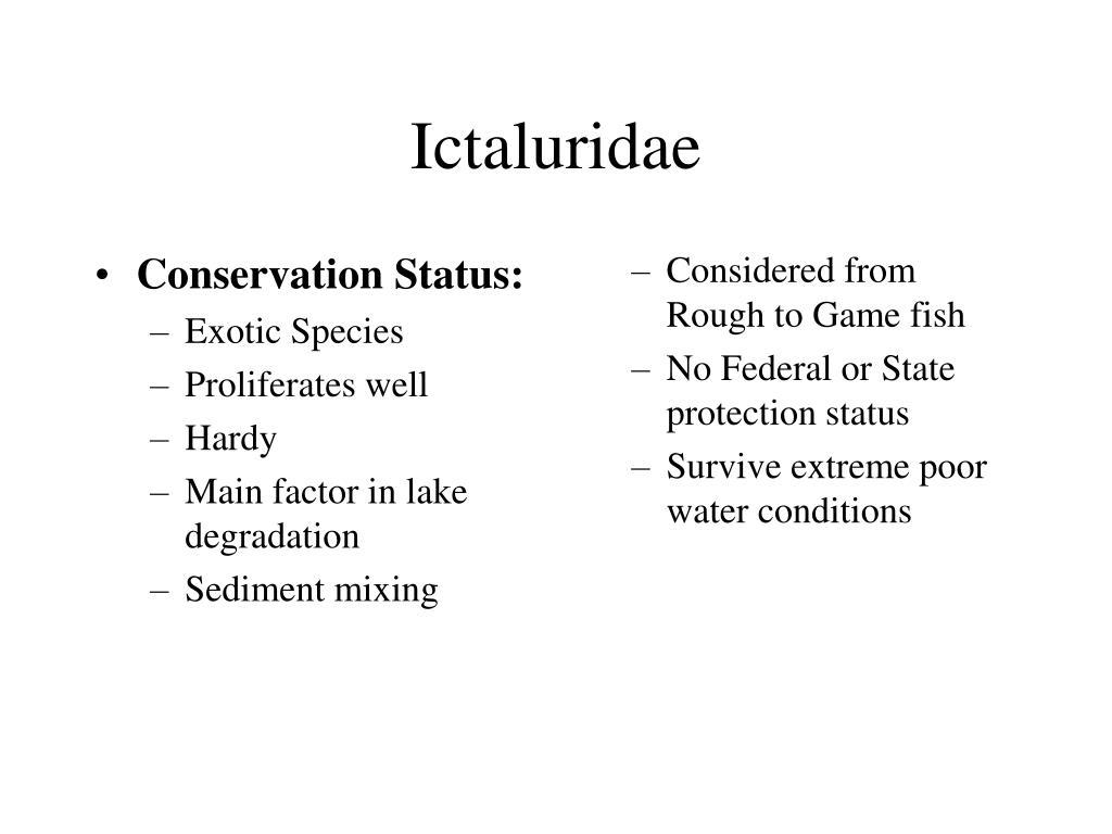 Conservation Status: