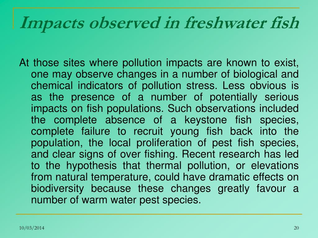 Impacts observed in freshwater fish